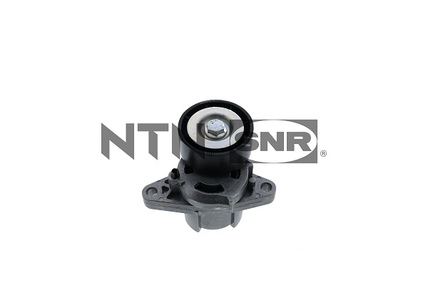 Galet tendeur accessoires SNR GA355.14 (X1)
