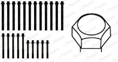 Vis de culasse PAYEN HBS106 (X1)