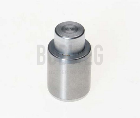 Piston etrier de frein BUDWEG CALIPER 233003 (X1)