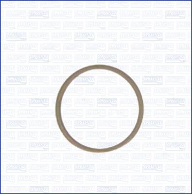 Joint de bouchon de vidange AJUSA 22004800 (X1)
