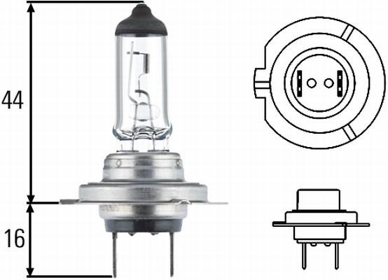 Ampoule, projecteur principal HELLA 8GH 178 560-493 (X1)