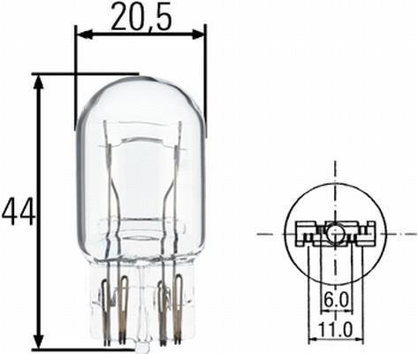Ampoules HELLA 8GD 008 893-002 (X1)
