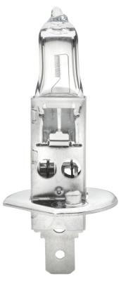 Ampoules HELLA 8GH 002 089-131 (X1)