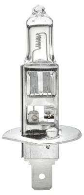 Ampoules HELLA 8GH 002 089-491 (X1)