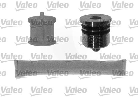Bouteille deshydratante VALEO 509794 (X1)