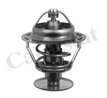 Thermostat/calorstat CALORSTAT BY VERNET TH1542.89J (X1)
