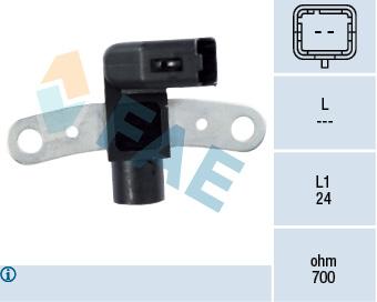 Capteur d'angle FAE 79252 (X1)