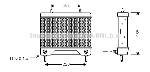 Radiateur huile AVA QUALITY COOLING MS3115 (X1)