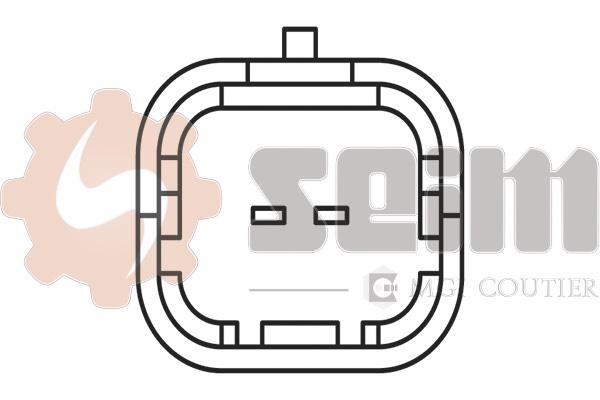 Capteur de cliquetis SEIM CC77 (X1)