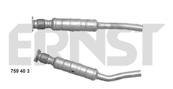 Catalyseur ERNST 759403 (X1)