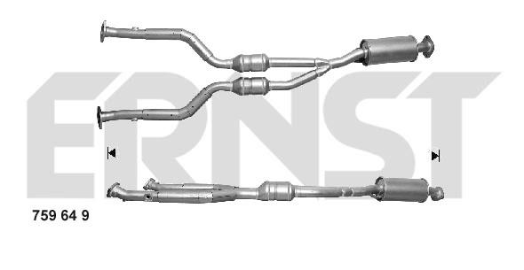 Catalyseur ERNST 759649 (X1)