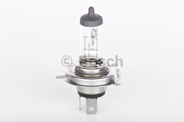 Ampoules BOSCH 1 987 302 049 (X1)