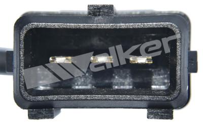 Capteur de cliquetis WALKER PRODUCTS 242-1025 (X1)