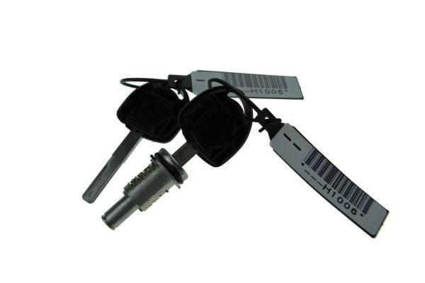 Barillet de porte AUTOMEGA 100077910 (X1)