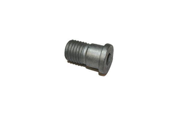 Vis disque de frein AUTOMEGA 120069810 (X1)
