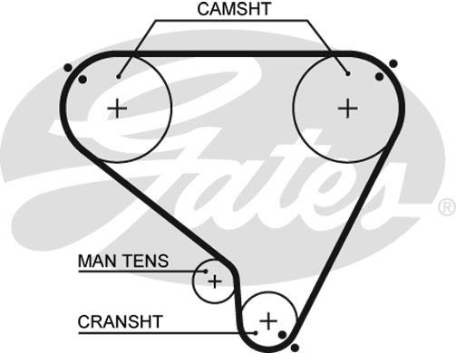 Courroie de distribution GATES 5146 (X1)