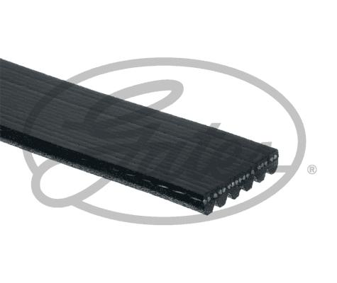 Courroie d'accessoire GATES 6PK1090SF (X1)