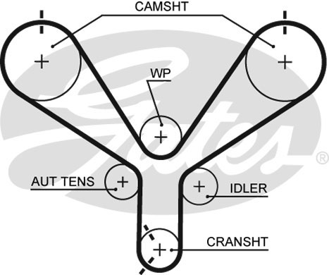 Courroie de distribution GATES T190 (X1)