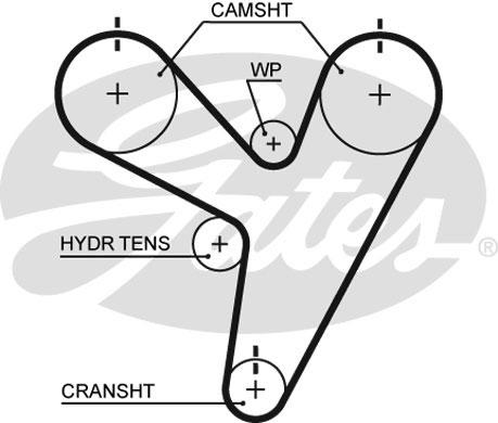 Courroie de distribution GATES T255 (X1)