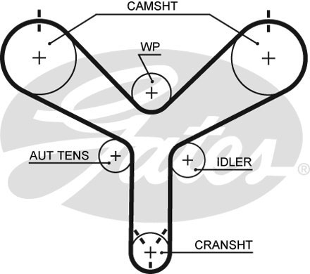 Courroie de distribution GATES T298 (X1)