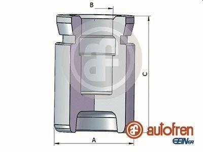 Piston etrier de frein AUTOFREN SEINSA D025333 (X1)