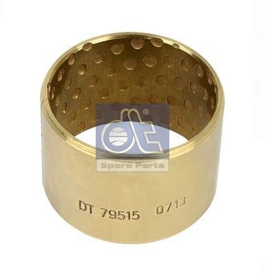 Coussinet d'axe de mâchoire de frein DT Spare Parts 10.13341 (X1)