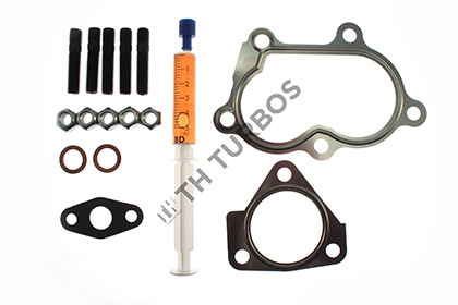 Kit montage turbo TURBO'S HOET TT1100066 (X1)