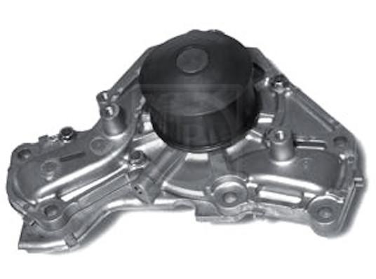 Pompe a eau NPS M151I45 (X1)