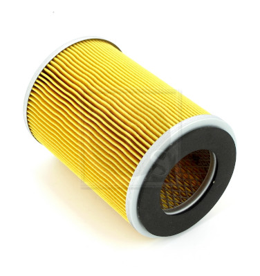 Filtre a air NPS N132N17 (X1)