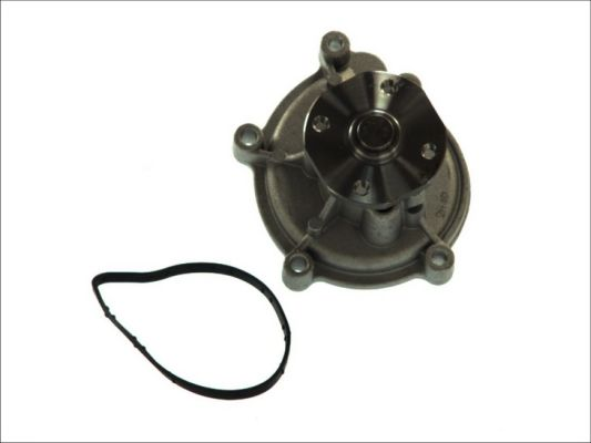 Pompe a eau THERMOTEC D1M051TT (X1)
