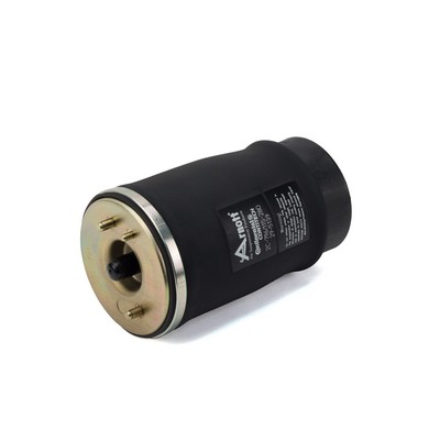 Divers compresseur pneumatique (suspensions) Arnott A-2503 (X1)