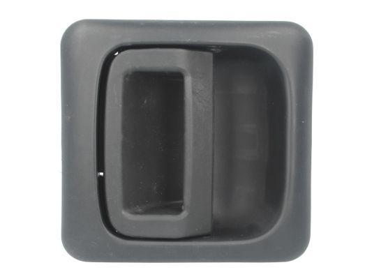 Poignee de porte BLIC 6010-07-031405P (X1)