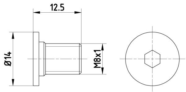 Vis disque de frein HELLA PAGID 8DZ 355 209-021 (X1)