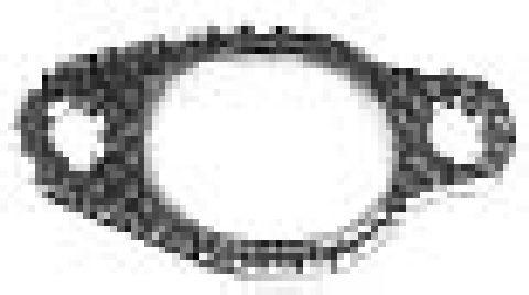 Joint de collecteur d'echappement Metalcaucho 02780 (X1)