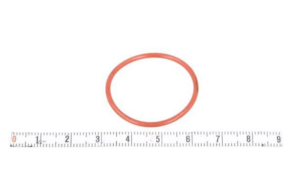 Bague d'étanchéité de machoire de frein SBP 12-RO027 (X1)