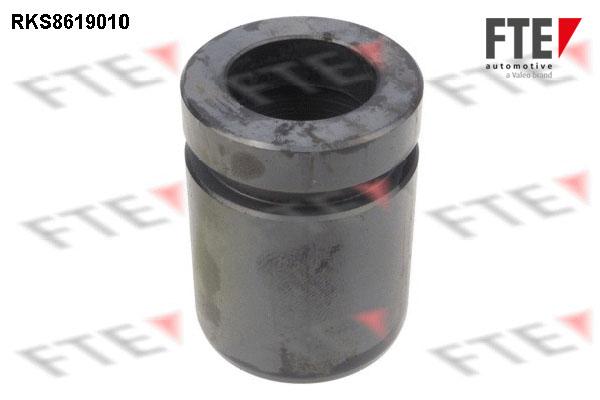 Piston etrier de frein FTE RKS8619010 (X1)