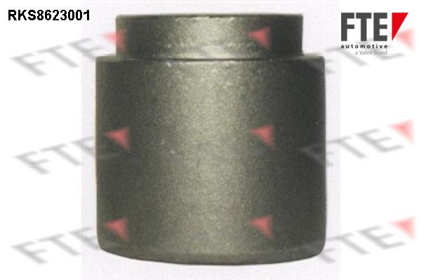 Piston etrier de frein FTE RKS8623001 (X1)