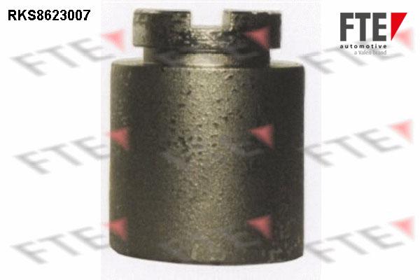 Piston etrier de frein FTE RKS8623007 (X1)