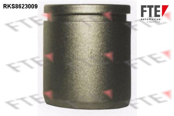 Piston etrier de frein FTE RKS8623009 (X1)