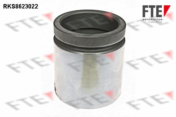 Piston etrier de frein FTE RKS8623022 (X1)