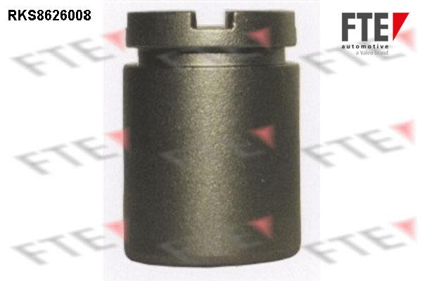 Piston etrier de frein FTE RKS8626008 (X1)