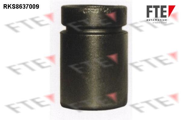 Piston etrier de frein FTE RKS8637009 (X1)