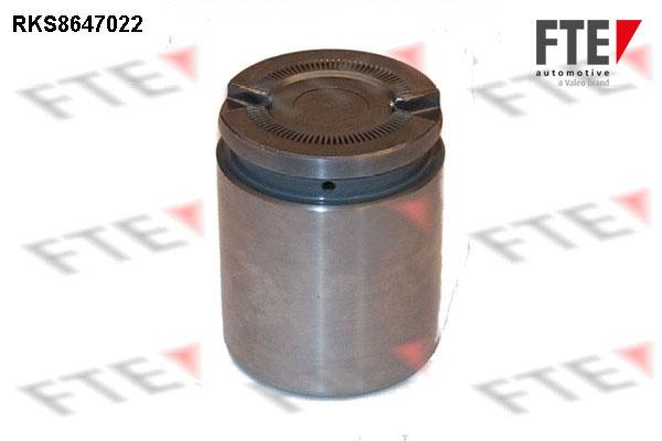 Piston etrier de frein FTE RKS8647022 (X1)