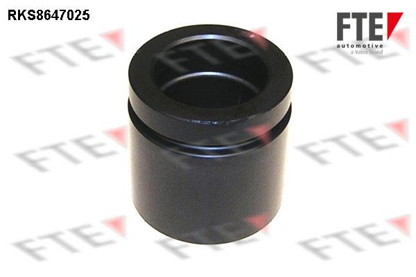 Piston etrier de frein FTE RKS8647025 (X1)