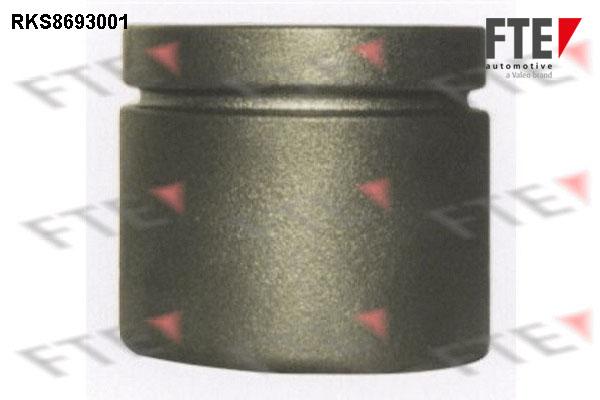 Piston etrier de frein FTE RKS8693001 (X1)