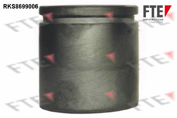 Piston etrier de frein FTE RKS8699006 (X1)