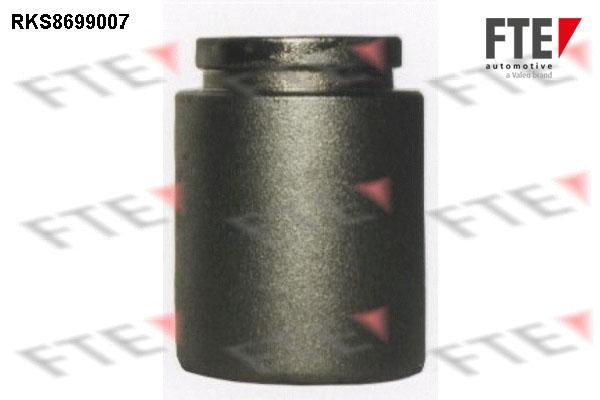 Piston etrier de frein FTE RKS8699007 (X1)