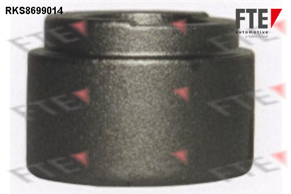 Piston etrier de frein FTE RKS8699014 (X1)