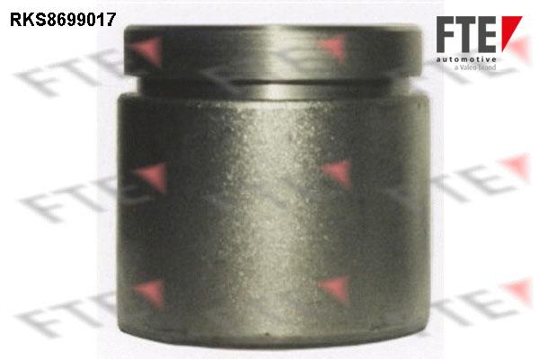 Piston etrier de frein FTE RKS8699017 (X1)