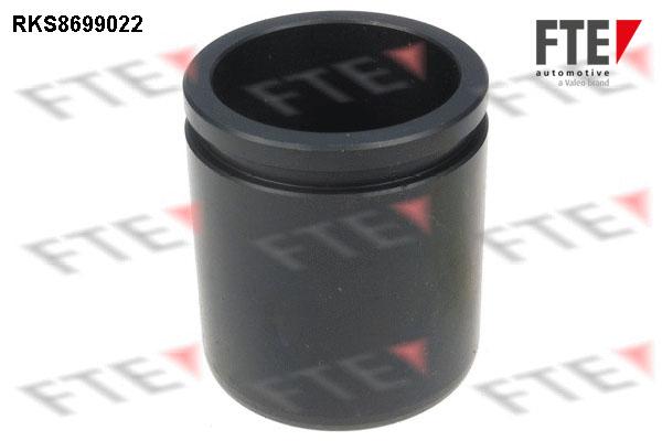 Piston etrier de frein FTE RKS8699022 (X1)